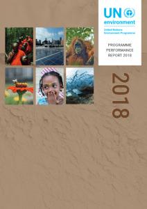 performance-report2018