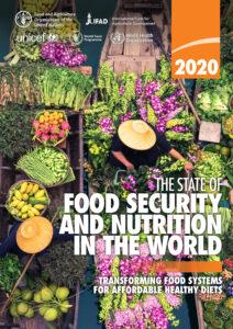 Food Security 2020