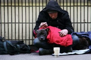 homeless person in the street with dog